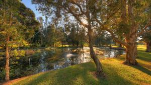 A garden outside Nambucca River Tourist Park