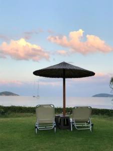 Κήπος έξω από το Angeliki Beach Hotel