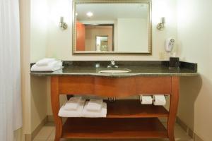 A bathroom at Holiday Inn Express Hotel & Suites Fredericksburg