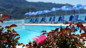 The swimming pool at or near Belle Helene Hotel