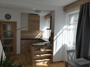 Kuchyň nebo kuchyňský kout v ubytování Apartmány U Holubů