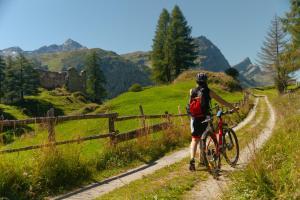 Radfahren an der Unterkunft Hotel Suretta oder in der Nähe