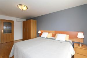 Postel nebo postele na pokoji v ubytování Vinohrady Sazavska Apartments