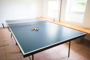 Table tennis facilities at Hotel Tisa Pohorje or nearby