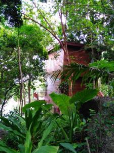 A garden outside Amaresa Resort & Sky Bar - experience nature