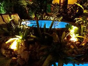 A piscina localizada em Pousada Vila Mato Verde ou nos arredores