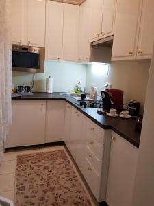 Kuchyň nebo kuchyňský kout v ubytování Apartments Vienna