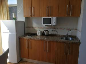 A kitchen or kitchenette at Benalmadena ,apartamento-Estudio primera Línea de Playa