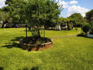 A garden outside Aitherial Summer House