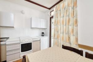A kitchen or kitchenette at Apartments Astra Plava Laguna