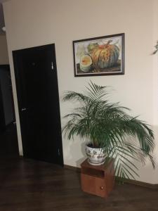 Телевизор и/или развлекательный центр в Хостел Фавор
