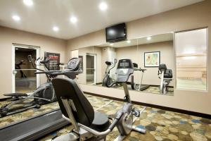 The fitness center and/or fitness facilities at Holiday Inn Express Le Roy