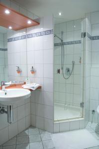 Ein Badezimmer in der Unterkunft Goldener Hirsch
