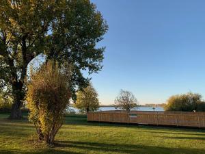 Сад в Отель «Шведская Деревня»