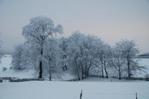 Eifel Lodge during the winter