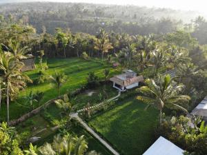 A bird's-eye view of Mu Homestay