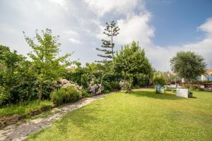 A garden outside Solcalante