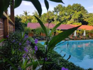 Бассейн в Azura Resort или поблизости