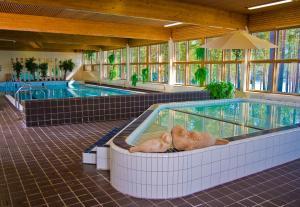 Majoituspaikassa Hotel Anttolanhovi tai sen lähellä sijaitseva uima-allas