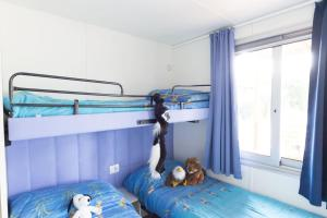 A bunk bed or bunk beds in a room at Piani Di Clodia