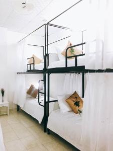 A bunk bed or bunk beds in a room at Thành đạt Homestay