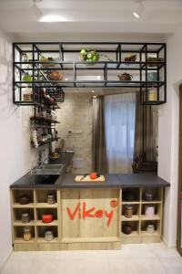 A kitchen or kitchenette at Hotel & Spa Vikey