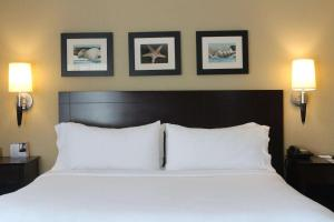 A bed or beds in a room at The Volare, Ascend Hotel Collection