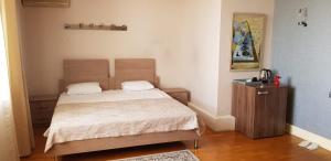 Cama ou camas em um quarto em Baku Sea View Hotel