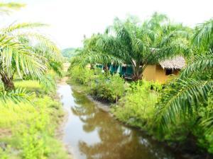 A garden outside YaoIsland Resort and Farm