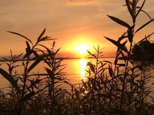Blick auf den Sonnenuntergang/Sonnenaufgang von der Ferienwohnung aus oder aus der Nähe
