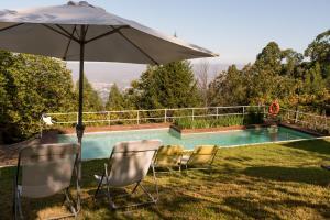 The swimming pool at or near Quinta das Leiras
