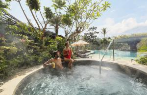 The swimming pool at or near Padma Resort Ubud