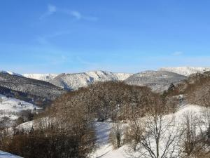 Les Effraies during the winter
