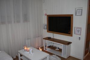 Televiisor ja/või meelelahutuskeskus majutusasutuses V&T Roo Apartment