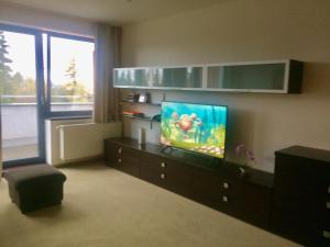 Televízia a/alebo spoločenská miestnosť v ubytovaní Apartman Panorama 213