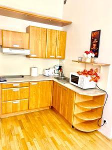 Kuchyň nebo kuchyňský kout v ubytování Opatovicka
