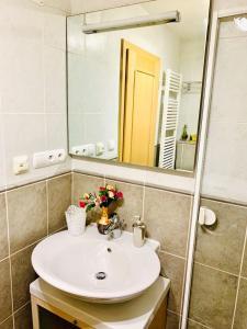 Koupelna v ubytování Opatovicka
