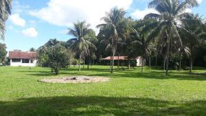 Um jardim em Sitio Terravida