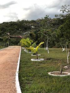 A garden outside Pousada São Gonçalo