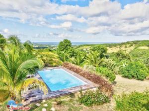 """Vue sur la piscine de l'établissement Villa """"Doucè Kréyol"""" ou sur une piscine à proximité"""