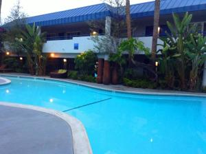 The swimming pool at or near Hotel Current