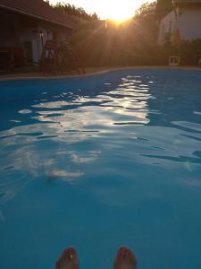 The swimming pool at or near Nádas Panzió
