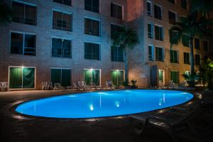 The swimming pool at or close to Petra Palace Hotel