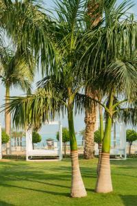 A garden outside Isrotel Dead Sea Hotel
