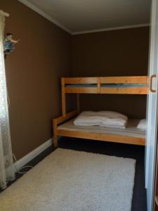 A bunk bed or bunk beds in a room at Lillens Pålgård 7 personen