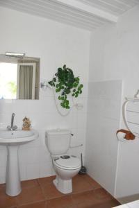 A bathroom at Hostellerie des châteaux