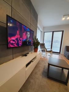 Telewizja i/lub zestaw kina domowego w obiekcie Nałęczowskie Wzgórze