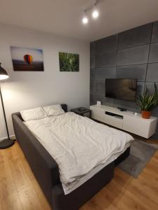 Łóżko lub łóżka w pokoju w obiekcie Nałęczowskie Wzgórze