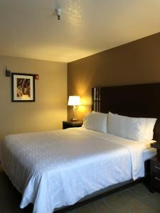 A bed or beds in a room at Holiday Inn Express Winnemucca