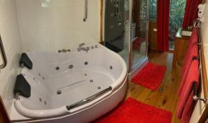 A bathroom at Figtree Getaway